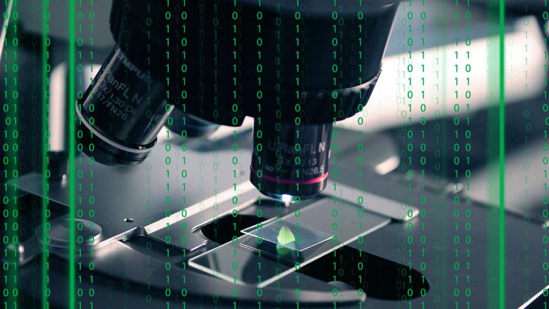 Laboratorium walczące z Covid-19 pod atakiem cyberprzestępców